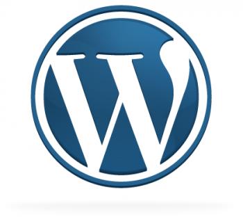WordPress Auto Update Problems